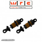 FRONT SHOCK ABSORBERS KIT